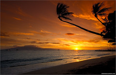 Hawaiian Sunset (pascalbovet.com) Tags: sunset sea usa beach palms hawaii maui