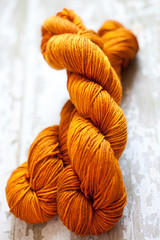 'Dragonfly in Amber' on Silk Merino DK