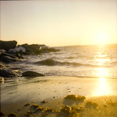 * (Nick Today) Tags: sunset 120 6x6 tlr film beach mediumformat rhodeisland yashica yashicamat