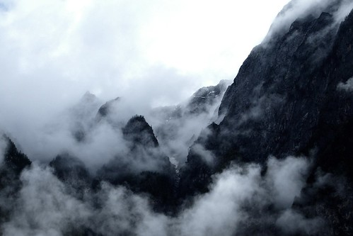 Cloud forest and mountain