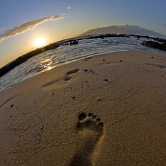 365/210 {return} (Child Of The Stars) Tags: ocean sunset sea hawaii sand pacific footprints maui