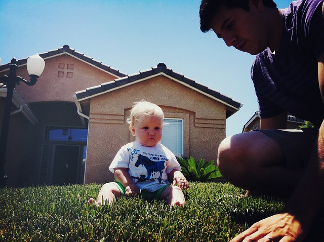 Amos in grass 2