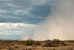 Monsoon Haboob July 31st 2011 (www.Monsoonmadness.net) Tags: lighting arizona rain clouds desert monsoon dust thunderstorms haboob