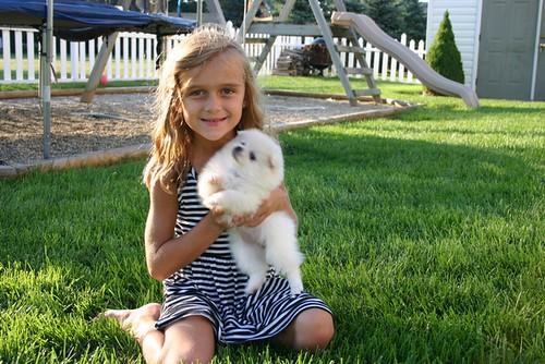 Daisy & Pippa - 6 weeks