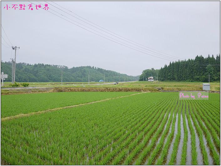 大森町生態農場DIY-15.jpg