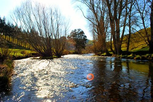 NZ_farm_4