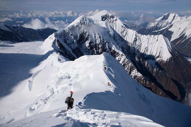 Climbing the Coxcomb