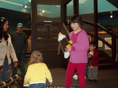 yellowstone national park playcenter (Nature N Legos) Tags: fun stuffedanimal eagles