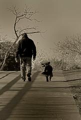 Ese Amigo del Alma IV (diegohernanibarra) Tags: dog argentina amigo nikon friend perro rosario mascota virado compañero sigma70300apo diegohernanibarra