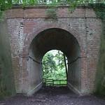 Tunnel under railway bridge near Etchinghill thumbnail