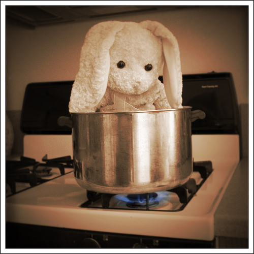 A tongue in cheek rendition of the bunny boiling scene in Fatal Attraction, featuring a stuffed rabbit in a pot on the stove