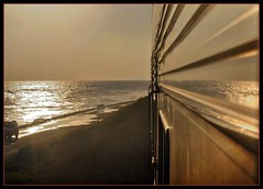 Pacific ocean Surfliner