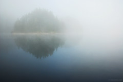misty morning ,    (.:: Maya ::.) Tags: morning white mist lake nature water misty pine clouds landscape island dam bulgaria   rodopi    beglika      rhodpe mayaeye mayakarkalicheva   wwwmayaeyecom