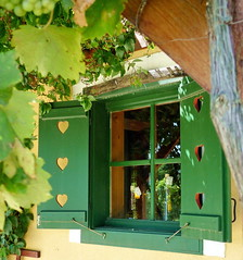 Soml vine-lands - winery (elinor04) Tags: window hungary wine ivy shutter creeper wineroute transdanubia vinelands soml somlhegy