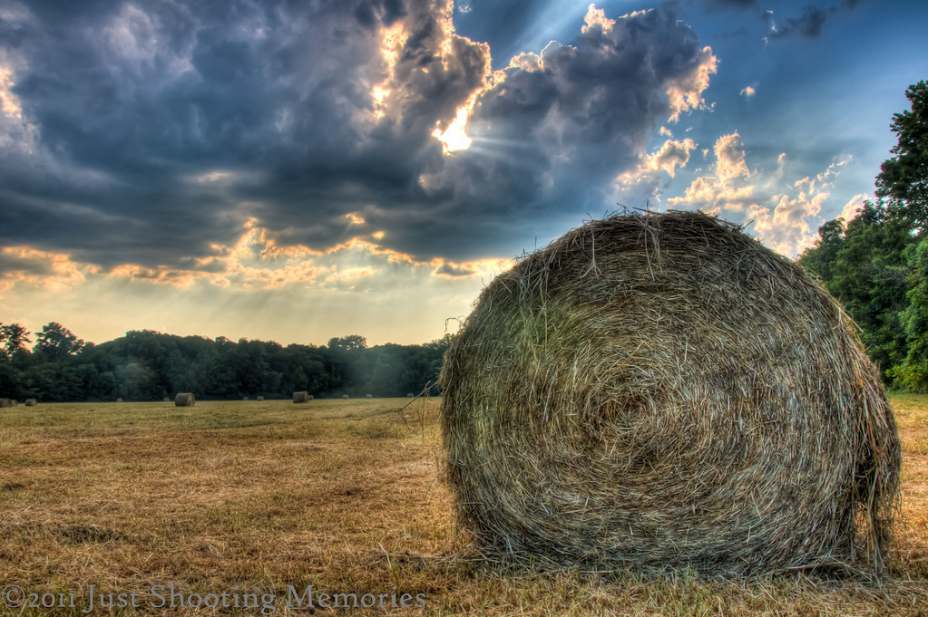 The Hay Bale