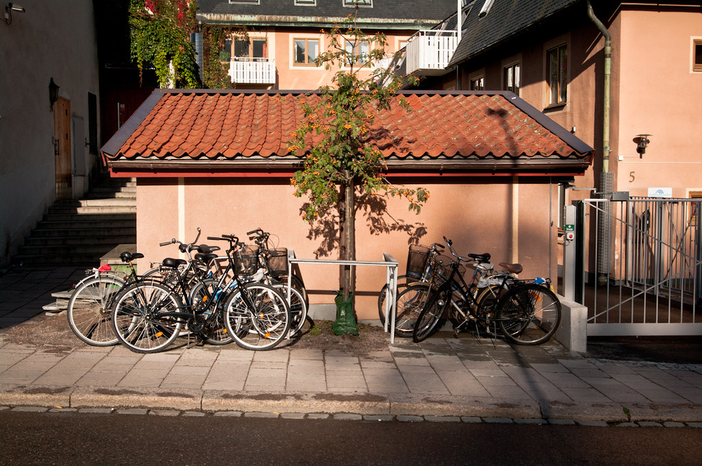 Bicycles parked next to tree in Uppsala, Sweden