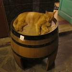 "Cat on Barrel <a style=""margin-left:10px; font-size:0.8em;"" href=""http://www.flickr.com/photos/14315427@N00/6189900222/"" target=""_blank"">@flickr</a>"