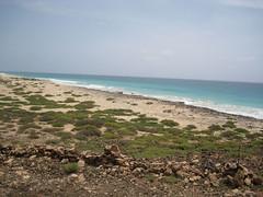 CAP VERT 09.2011 718 (MUMU.09) Tags: verde island cabo vert insel cap isla caboverde isola boavista le capvert leducapvert