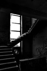 Go up! (C MB 166) Tags: light bw abandoned architecture stairs germany deutschland licht saxony ruin ruine treppe sachsen slaughterhouse verlassen chemnitz archtitektur khlhaus schlachthaus coldstoragedepot hilbersdorferstrase vebkhlbetrieb