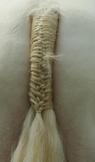 Plaited Tail