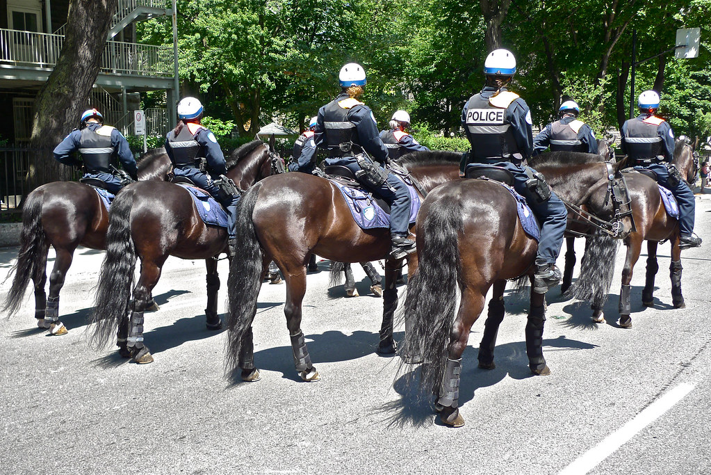 Copyright Photo: Security Escort on Horseback 2 by Montreal Photo Daily, on Flickr