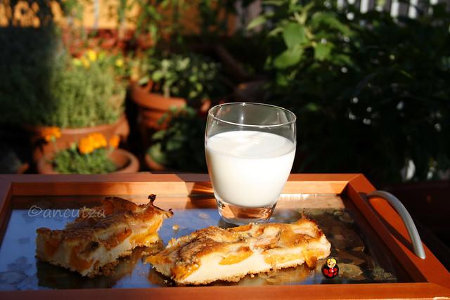 ricetta con foto Torta soffice alle albicocche