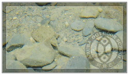 20110717桶后溯溪84