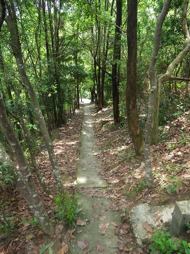 20110721 Hot Failed Trail/Road Run