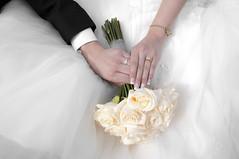 Ashley&Scotts Wedding
