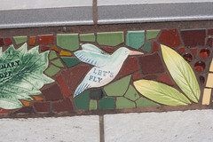 BLOG-2011-JULY-MOSAICS-img_9848
