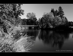 Amphitheater Bridge (JSB PHOTOGRAPHS) Tags: bridge bw water pond nikon stadium amphitheater nikkor autzen 18200mm d90