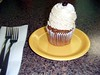 Cappuccino Cupcake (BuccaneerBoy) Tags: travel family summer usa hot chattanooga coffee fun restaurant downtown sweet tennessee south bbq bean cupcake ribs icing dining dine 2011