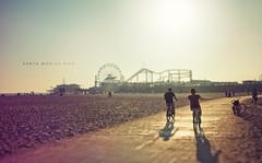 Santa Monica Pier (isayx3) Tags: ocean summer sun beach wheel 35mm amusement sand nikon pacific santamonica perspective shift ferris trail biking boardwalk rollercoaster f2 nikkor studios pacificpark tilt tones d3 peir 2011 plainjoe isayx3 plainjoephotoblogcom
