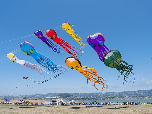 Big octopus kites