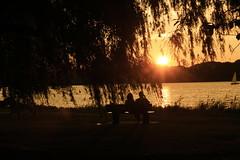 Us. (Chi Feels Pretty) Tags: 2 summer two usa tree love boston america sunrise canon us tramonto romantic albero chiara amore due noi chifeelspretty