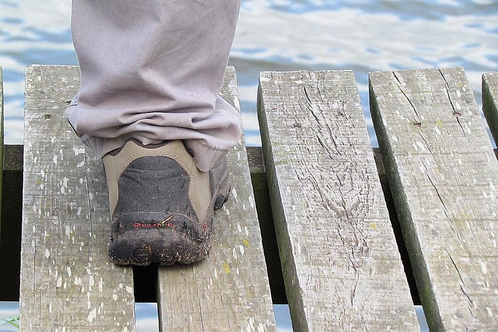 óis da ribeira | pateira de fermentelos