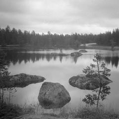 (tiinateaspoon) Tags: lake tree film 35mm canon square blackwhite rocks prima