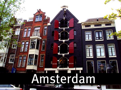 I love Amsterdam! Travelzin, the netherlands