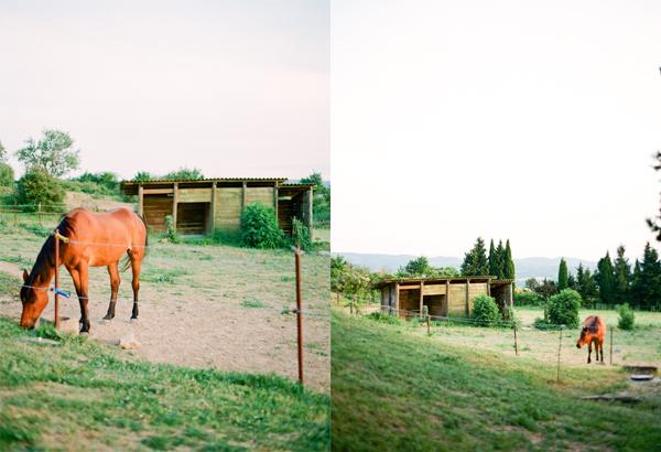 2011_0510_Carcassonneblog14.jpg