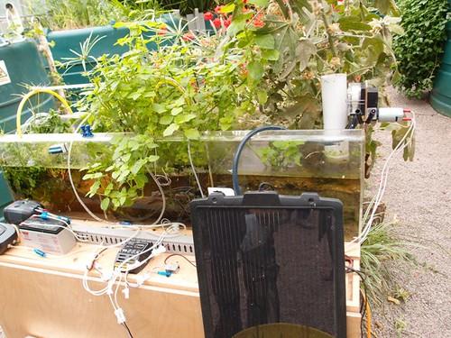 利用簡單的儀器過濾污水(無添加化學藥劑)