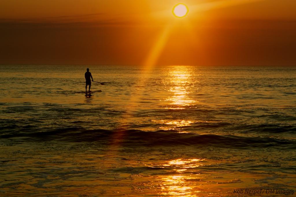 Paddle Boarder Sunrise