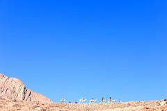 Sky camels (Maine Surfer) Tags: blue vacation sky sun mountain color beach water canon san desert top egypt sharmelsheikh deep el mtsinai camel sheikh hurgada sinai shar yeallow   colorphotoaward egypet   mainesurfer