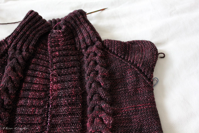 WIP - Hooray Cardigan