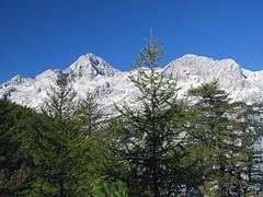 Triglav (Damijan P.) Tags: mountains alps slovenia gore slovenija alpe pokljuka brdo julianalps hribi vievnik julijskealpe lipanca debelape prosenak