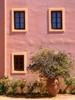 Unseen Window (pantha29) Tags: flowers windows olympus crete vase zuiko e510 summersday 1260mm hiddenwindow unseenwindow