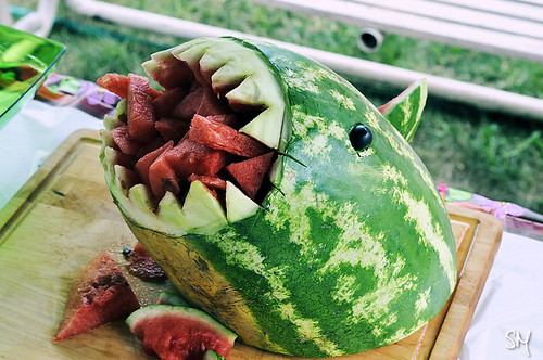 sharkmelon