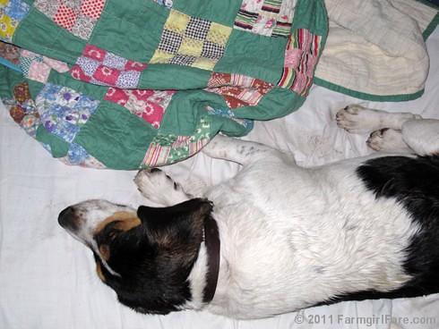 Green Vintage Quilt Love 2 - FarmgirlFare.com