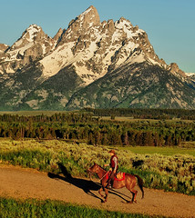 The Lone Rider (Jeff Clow) Tags: ranch shadow horse west landscape cowboy riding western wyoming cowgirl tetons equine oldwest grandtetonnationalpark jacksonholewyoming dcptjuly2011