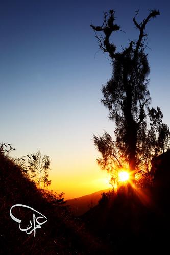 Sunrise @ Pos 3, Sembalun Lawang Route