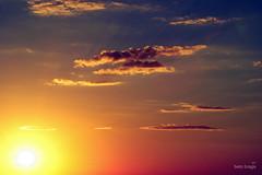 A amarelinha saiu pro escanteio. (beto braga) Tags: pordosol sol sony ms alpha pantanal campogrande matogrossodosul 380 allxpressus bemflickrbembrasil sonyalpha380 betobraga morenafoto